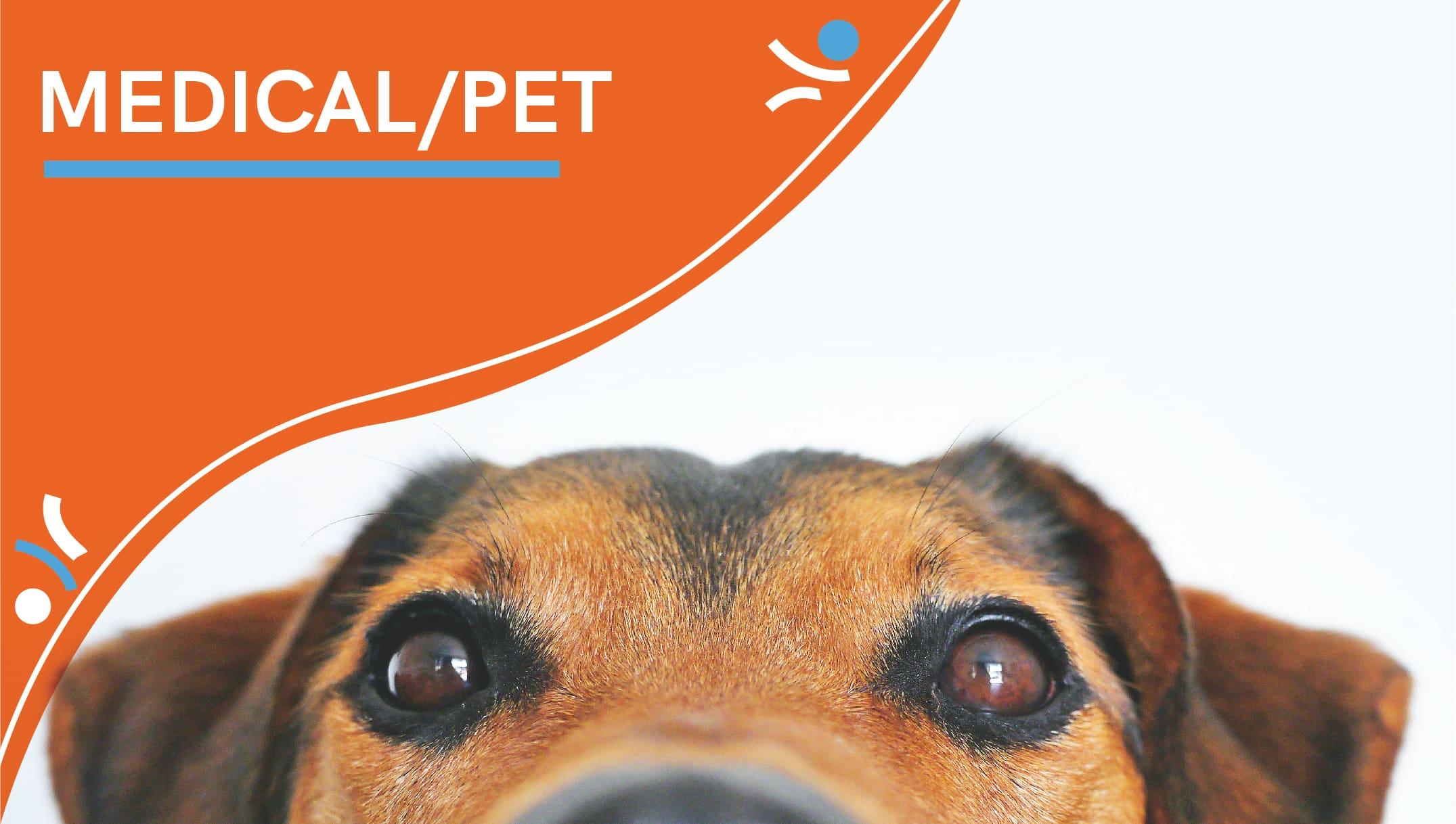 Case Studies_Medical_Medical-Pet-23